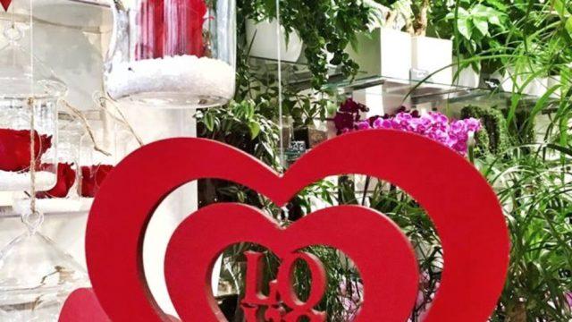 Fleuriste Vegetal à Nice